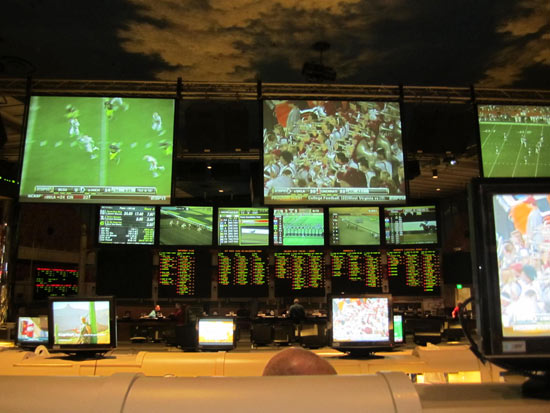 flamingo sports book